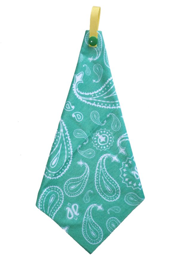 Wee-Wipe: Spearmint Paisley