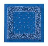 Bandana: Clearwater Blue