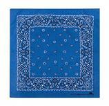 Bandana: Clearwater Blue